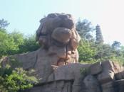 Qingdao 8