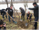 Tree Planting in Jining