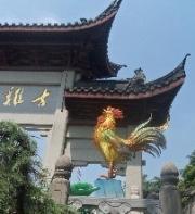 Nanjing 17