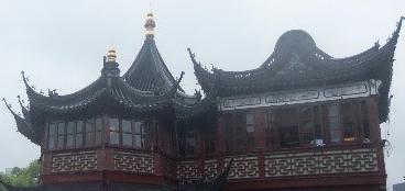 Shang18