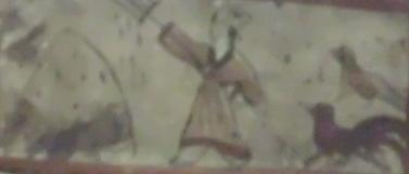 DSCI0446